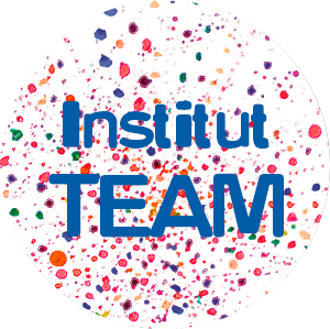 Institut Team