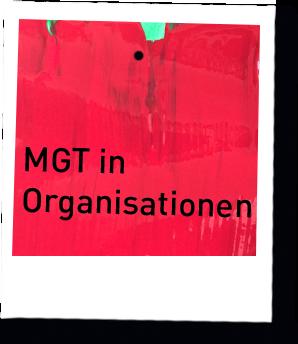 MGT in Organisationen